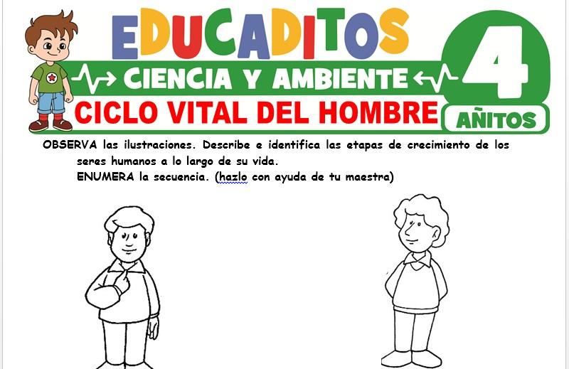 Ciclo Vital del Hombre para Niños de 4 Años