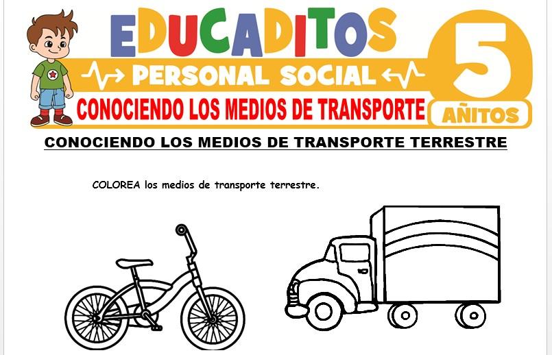 Conociendo los Medios de Transporte para Niños de 5 Años