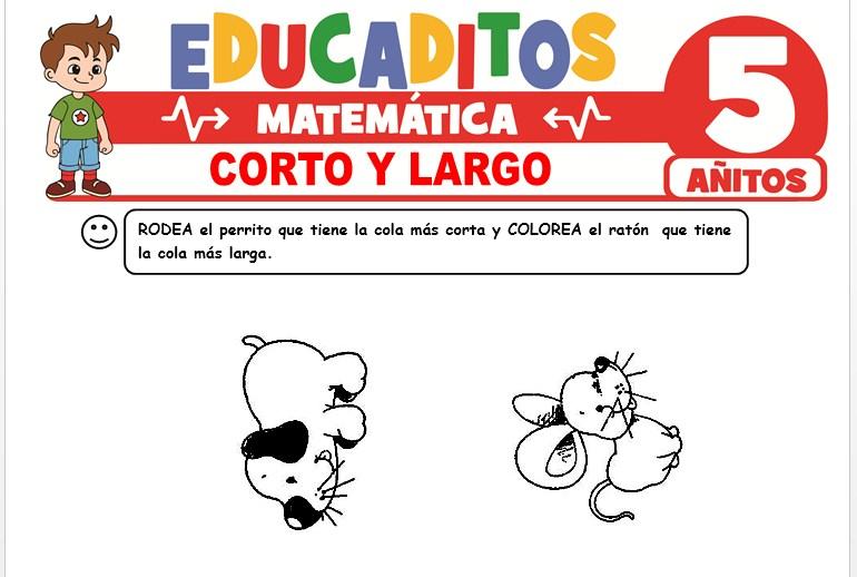 Corto Y Largo para Niños de 5 Años