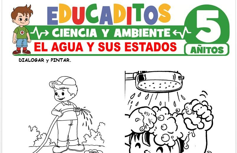 El Agua y sus Estados para Niños de 5 Años