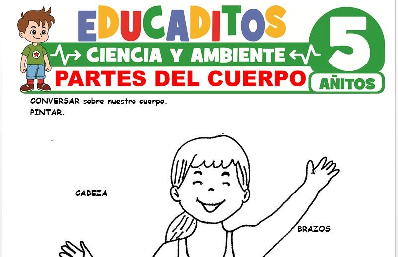 Partes del Cuerpo para Niños de 5 Años